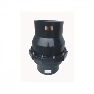 NPT BSPT thread swing non return check valve pvc