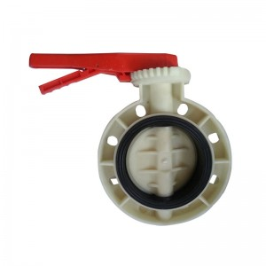 OEM/ODM China Swing Check Valve -